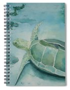 Sea Turtle And Friend Spiral Notebook