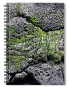 Sea Turtle Formation Spiral Notebook