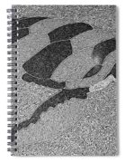 Sea Turtle Inlay In Grayscale Spiral Notebook