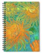 Sea Urchin 10 Spiral Notebook