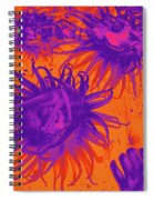 Sea Urchin 14 Spiral Notebook