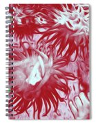 Sea Urchin 7 Spiral Notebook