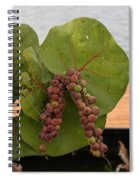 Seagrape Fruits Spiral Notebook