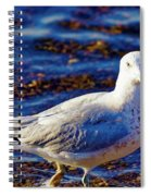 Seagull 1 Spiral Notebook