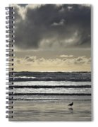 Seagull At Cannon Beach Spiral Notebook