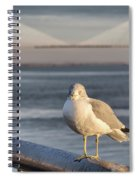 Seagull At Ravenel Bridge Spiral Notebook