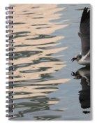 Seagull Fun Spiral Notebook