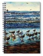 Seagull Get-together Spiral Notebook