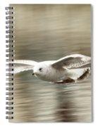 Seagull Glide Spiral Notebook