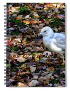 Seagull In The Fallen Leaves Spiral Notebook