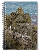 Seagull Island On Cefalu In Sicily  Spiral Notebook