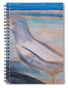Seagull  On Seashore Spiral Notebook
