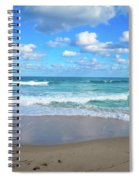 Seagull On The Atlantic Shore Spiral Notebook