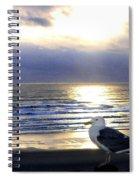 Seagull Sentinel Spiral Notebook