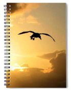 Seagull Silhouette Spiral Notebook