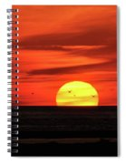 Seagull Sunset Spiral Notebook