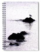 Seagull Waiting Spiral Notebook