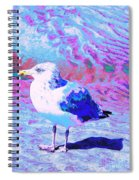 Cool And Colorful Gull Spiral Notebook