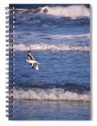 Seagulls Above The Seashore Spiral Notebook