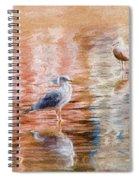 Seagulls - Impressions Spiral Notebook
