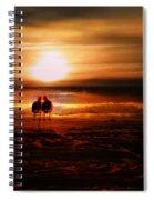 Seagulls On The Beach Spiral Notebook