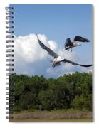 Seagulls Over Marsh Spiral Notebook