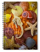 Seahorse And Assorted Sea Shells Spiral Notebook