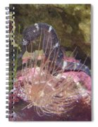 Seahorse1 Spiral Notebook
