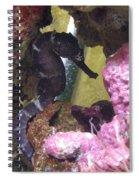 Seahorse3 Spiral Notebook