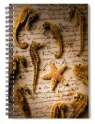 Seahorses And Starfish On Old Letter Spiral Notebook