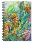 Seahorses Three Spiral Notebook
