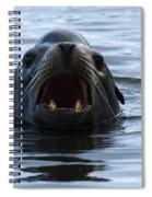 Seal Spiral Notebook