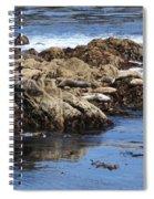 Seal Island Spiral Notebook
