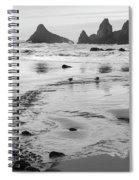 Seal Rock 0169 Spiral Notebook