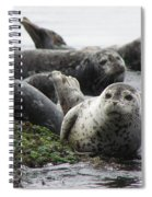 Seal Rock Spiral Notebook