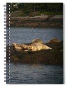 Seal Series 7 Spiral Notebook