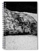 Seal Spiral Notebook
