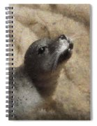 Seal With A Kiss Spiral Notebook