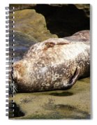 Sealed With A Smile Spiral Notebook