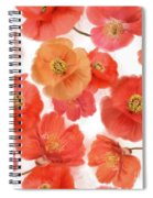 Seamless   Pattern Of Watercolor Poppy Flowers Spiral Notebook