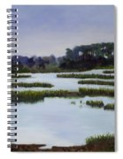 Searching Savannah Marsh By Marilyn Nolan- Johnson Spiral Notebook