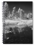 Searching The Pond Spiral Notebook
