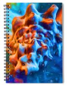 Seashell Abstract Spiral Notebook