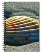 Seashell After The Wave Spiral Notebook