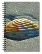 Seashell After The Wave Square Spiral Notebook