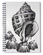 Seashell And Barnacles Spiral Notebook