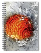 Seashell Art - Square Format Spiral Notebook