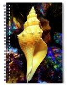 Seashell Spiral Notebook