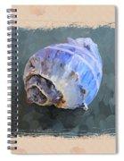 Seashell IIi Grunge With Border Spiral Notebook