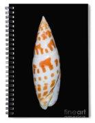 Seashell In Fishnet Spiral Notebook